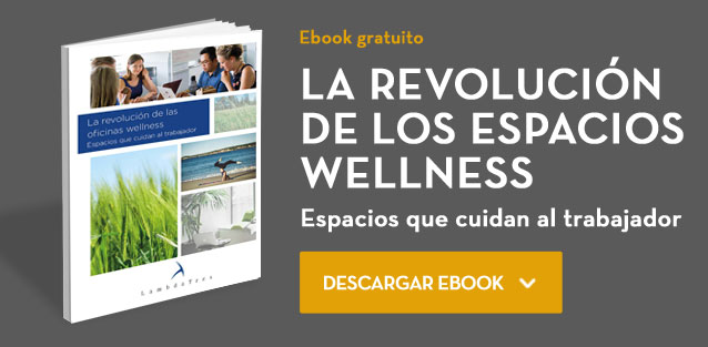 oficinas wellness ebook